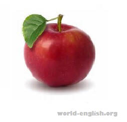 english word apple
